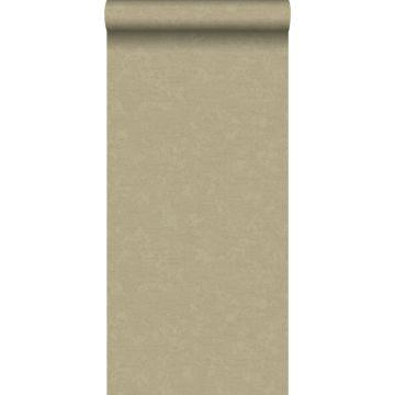 carta da parati liscia grigio talpa