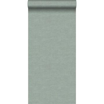 carta da parati struttura di lino verde celadon