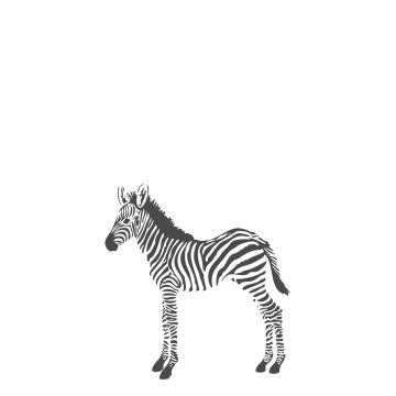 fotomurale zebra bianco e nero