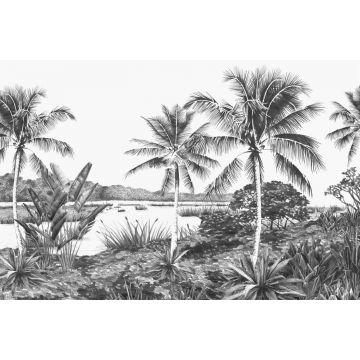 fotomurale paesaggio con palme bianco e nero