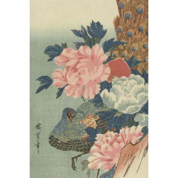 fotomurale pavone e peonie rosa veccho, verde e blu